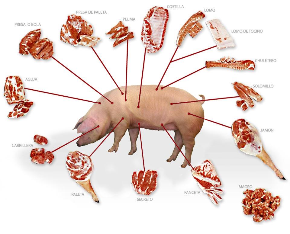 Eat Meat - Ventas - Carnes - Cortes de Cerdo
